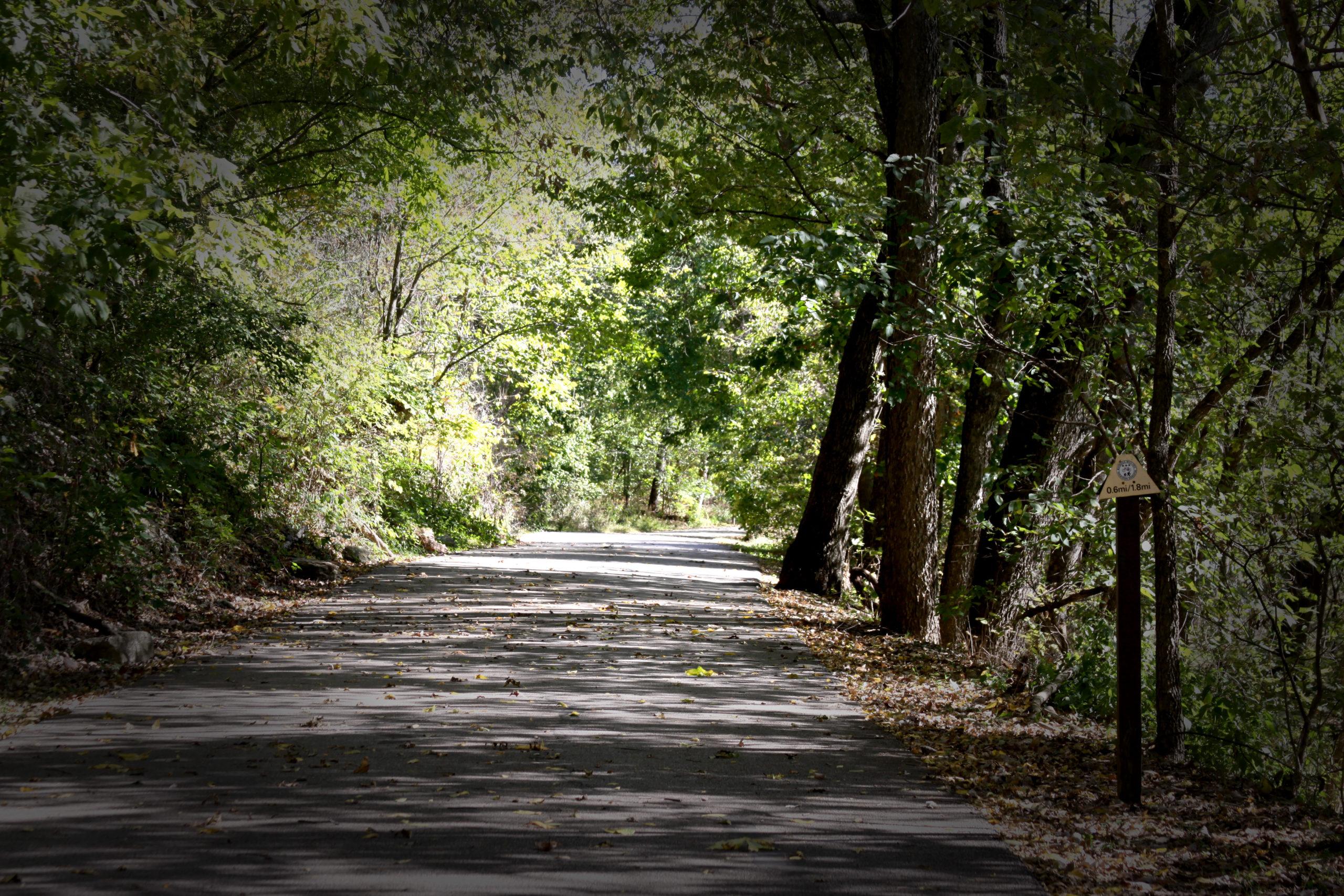 Lake Bell Vista Walk image
