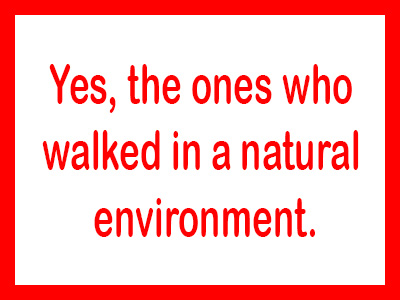 "Text image with words""Yes, the ones who walked in a natural environment"""