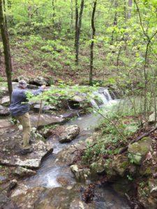 Bella Vista Hiker image