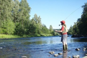 Image of Fly Fisherman in stream